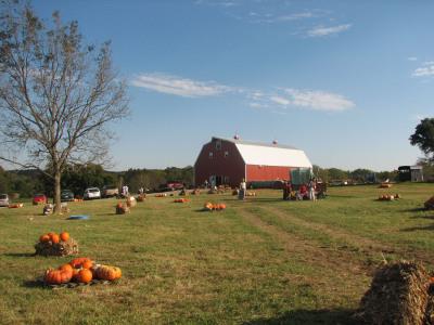 Pumpkin_patch_barn